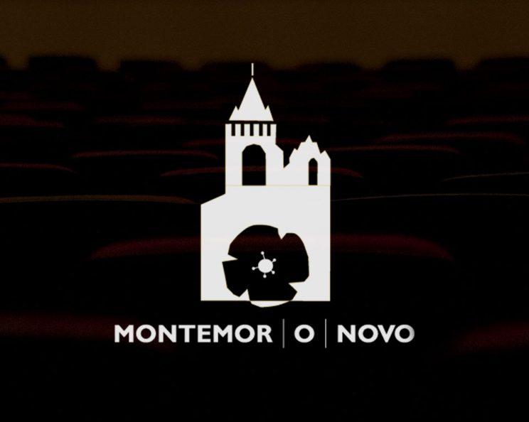 O Município de Montemor-o-Novo