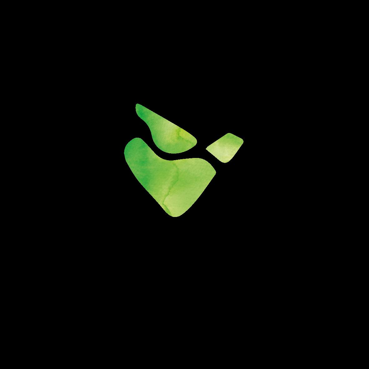 logotipo projeto visionarios